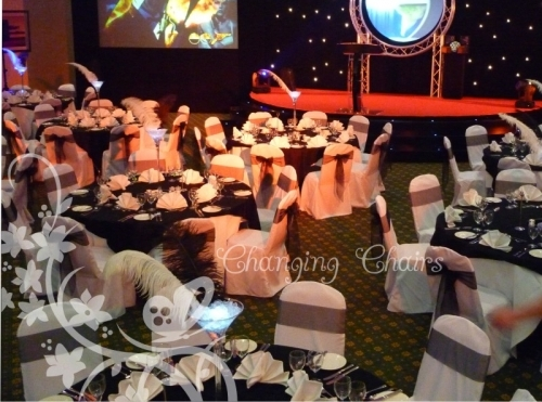 White And Black Theme Event Decorations Chair Covers 1
