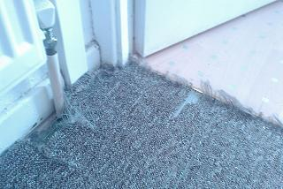 Pet damage carpet repairing