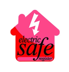 Electricsafe Logo Small