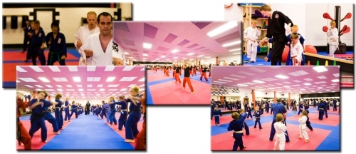 Award Winning Karate  Kickboxing Classes For Adults  Children From 4 Years