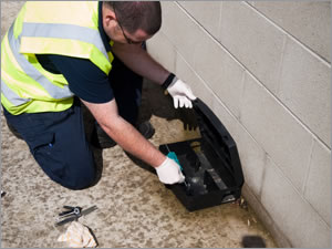 Pest Control Services for Business in Gloucestershire