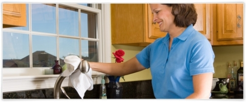 Domestic Cleaning1