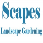 Scapes Landscapes