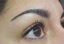 220px Permanent Makeup Eyebrow Procedure