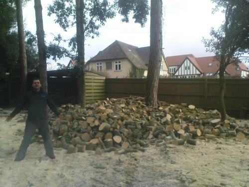 Logging felled timber