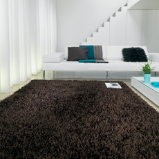 Brown / Chocolate Rugs