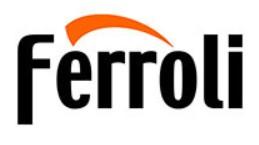 Ferroli Boiler Repair