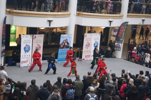 Chinese New Year 2017 Celebrations