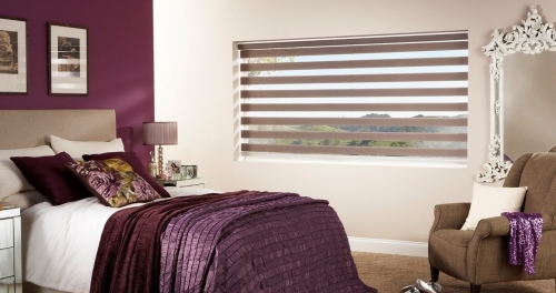 New! Vision Blinds