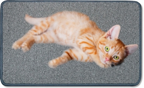 Infrared Carpet for Pets too