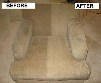 clean sofa free promite with every clean No more dust mites for 14 months