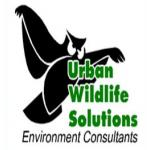 Urban Wildlife Solutions - pest service