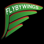 Flyby Wings Taxi