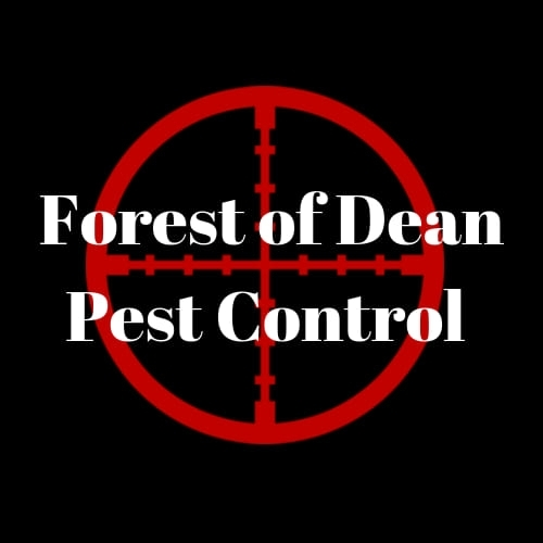 Forest Of Dean Pest Control Square Logo