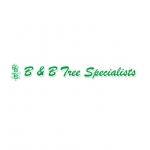 B and B Tree Specialist