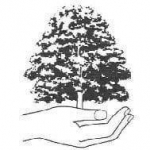 Midland Tree Management Ltd