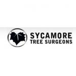 Sycamore Tree Surgeons
