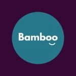 Bamboo Web Design