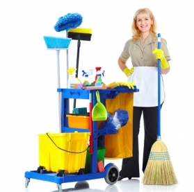 Kingston Upon Thames Rug Cleaning 50 3