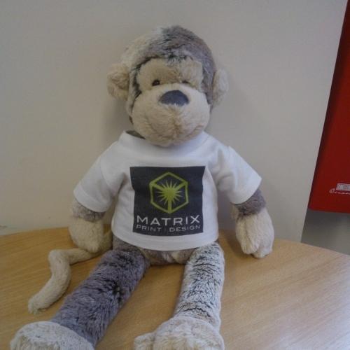 Mathew Rix the Matrix Monkey!