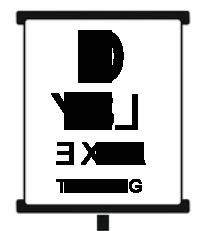 Visual Dyslexia Testing