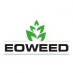 Eoweed