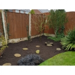 Sycamore Gardening