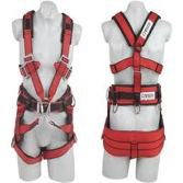 harness training uk