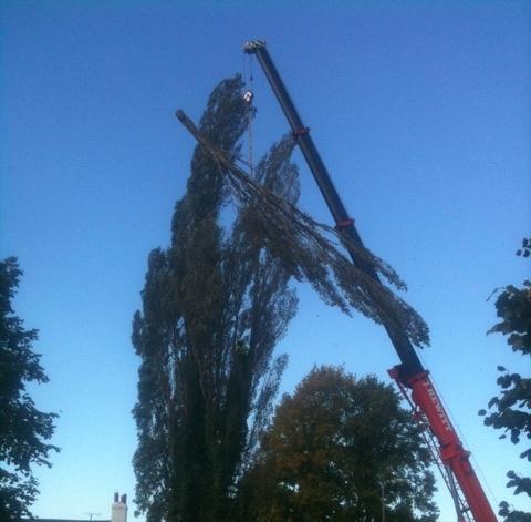 Crane Works