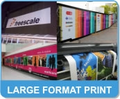 Large Format Vinyl Printing