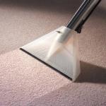 Alan Mountain Carpet Cleaning