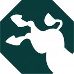 The Kick Ass Donkey Group Ltd