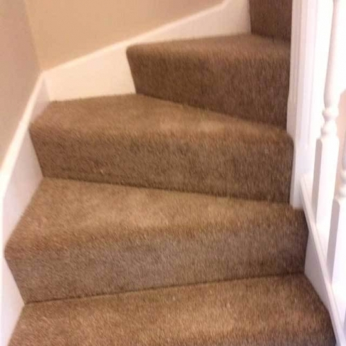 Cream Beige Carpets
